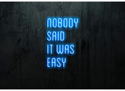 "Neon Led ""Nobody said it was easy"""