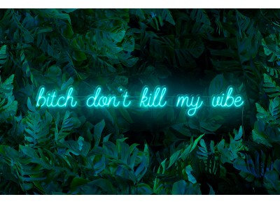 "Neón Led ""B*tch don't kill my vibe"""