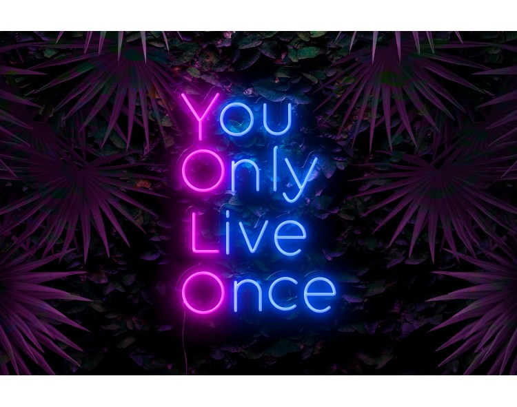 neon led you only live once lightsandwires